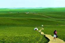 草原风光无限,漫山遍野野花丛生