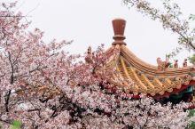 彭祖园位于徐州泉山区泰山路,占地面积近40公顷,是国家4A级景区。彭祖园的景点非常多,比如园区的东门