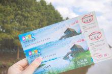 上海周边 崇明东滩湿地公园