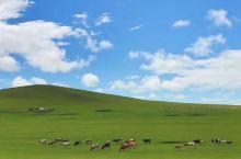 内蒙古额尔古纳湿地