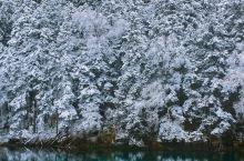 冬日里九寨沟,给你一场冰雪奇缘!