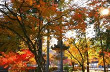 南禅寺的美丽秋光!