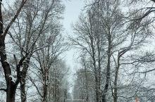 雪后的G350熊猫大道八美段