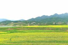 最美的绿江村
