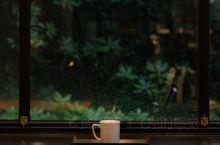 韩国探店 安静优雅的咖啡店 环境非常很美,雨天不能外出游玩,可以在咖啡店里坐上一整天,一台电脑一步手