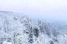 风雪归来---天子山