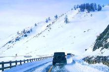 冬季自驾新疆喀纳斯,返程遭遇暴风雪,看牧马人和酷路泽如何脱困