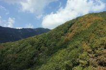 牛背梁国家森林公园