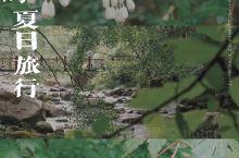 雨中枫林谷