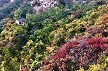 白石洞的彩色秋天