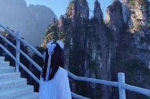 郴州网红莽山国家森林公园 莽山五指峰攻略