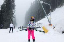 保加利亚滑雪