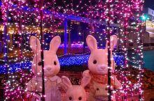 圣诞之夜,香椎花园
