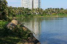 湛江渔港公园
