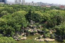 五一小众旅游地—常州红梅公园