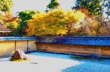 龙安寺庭园的红叶风光!