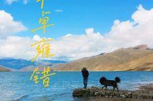 【羊卓雍错】一湖一水一蓝天一人一狗一世界