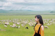 呼伦贝尔大草原