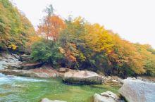 深秋光雾山的红叶,一大片一大片,很漂亮!