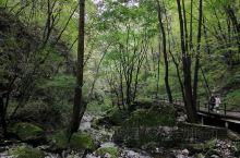 美丽大自然
