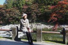 香岚溪是日本东海地区代表性的红叶胜地。每年11月下旬,以饭盛山为中心,在足组山和巴川汇流处巴桥上流处