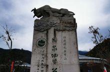 泉州德化石牛山两日游|春节|路线篇上