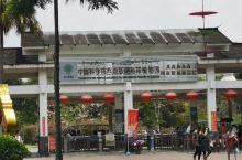 中科院西双版纳热带植物园(一)