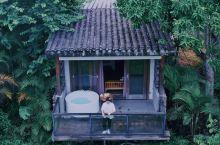 惠州|睡在千亩稻田🌾可以看星空的民宿
