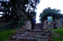 到马来西亚雪兰莪的皇家山看银叶猴