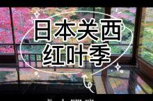 日本自由行——关西红叶季