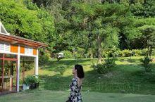 汕头南澳岛新西兰森林度假风玻璃房民宿