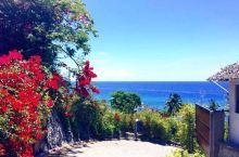 从桑坦德坐突突,到奥斯洛布观鲸鲨,距离很近。一路上,一边是茂密的丛林,一边是蔚蓝的大海,景色优美。迎