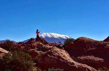 南美最值得走的一条自驾路,玻利维亚高原