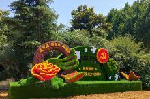 热烈庆祝中国共产党成立100周年[Flower]