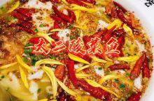 魔都人气网红餐厅——太二酸菜鱼