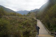 海子沟是四姑娘山景区内知名的徒步线路,除了入口处有木栈道,其他地方都是泥土路,这里群山环抱,植被丰茂
