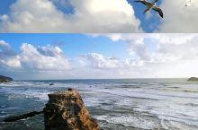 新西兰鸟岛,全球必看30大美景之一