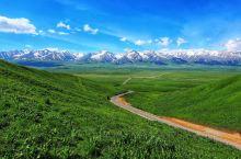 新疆草原|喀拉峻和那拉提哪个好?(下)  每年4月-6月是那拉提草原赏花季 从4月初顶冰绽放的野百合