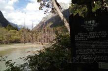 枯树滩位于四姑娘山长坪沟内,这里群山环抱,植被丰茂,自然风光优美,由于低温的雪山融水冲击,造成了很多