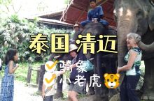 泰国清迈《动物编》