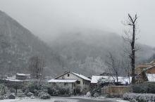 2020年阳坡院子第一场雪景