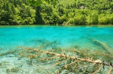九寨沟,湖水清澈见底,青山绿水之间,充满了无限遐想。 九寨沟风景区