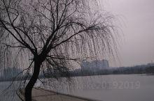 睢县凌冬的湖面,确实让人心旷神怡