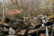 深秋的巴雾山