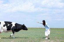 呼伦贝尔大草原最佳旅游时间6月份:初绿的草原+漫山遍野的野花(早晚穿毛衣)7月份:大片的油菜花海与草