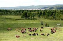 海拉尔区(Hailar District)是内蒙古自治区呼伦贝尔市的市辖区之一,是呼伦贝尔市政治、交