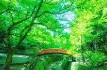 夏天的京都美景