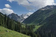 打卡云顶高原的青青草原,蓝天白云汇成一线,大爱文冬