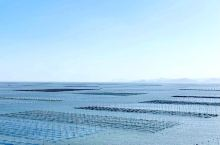 霞浦、滩涂、竹竿