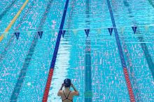 悉尼奥林匹克公园游泳馆